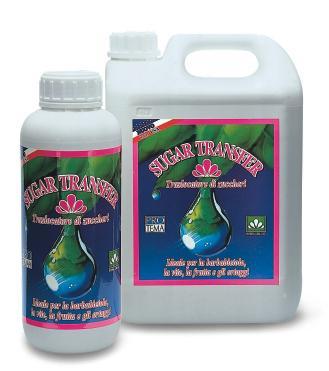 Sugar Transfer Plus2